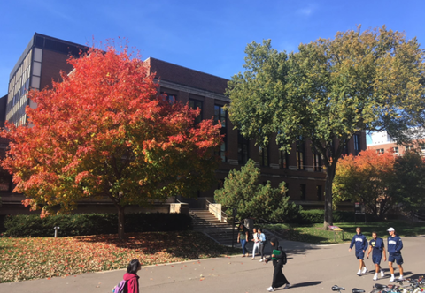 Exterior of Murphy Hall in autumn